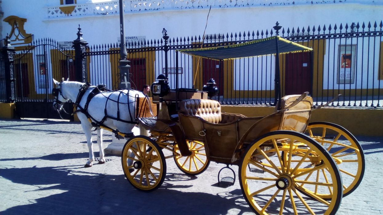 carruaje caballos vehiculos wallpaper